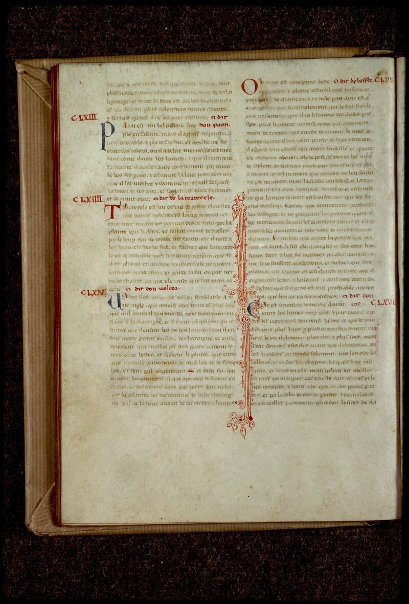 Lyon, Bibl. mun., ms. 0781, f. 037v - vue 2