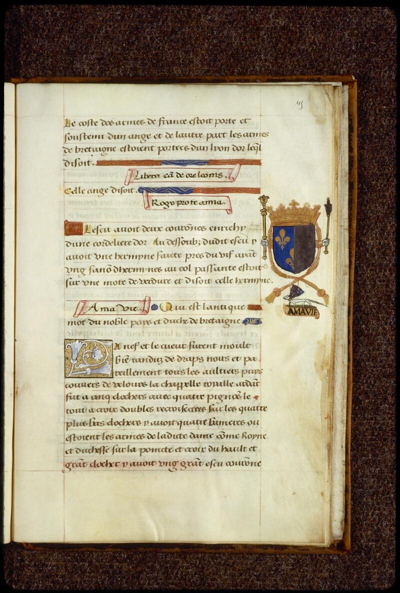 Lyon, Bibl. mun., ms. 0894, f. 045 - vue 1