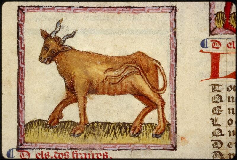 Lyon, Bibl. mun., ms. 1351, f. 024v - vue 1