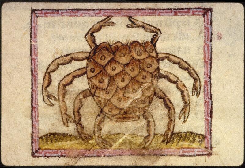 Lyon, Bibl. mun., ms. 1351, f. 024v - vue 3