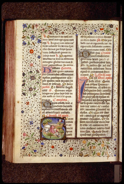 Lyon, Bibl. mun., ms. 1390, f. 256v - vue 1