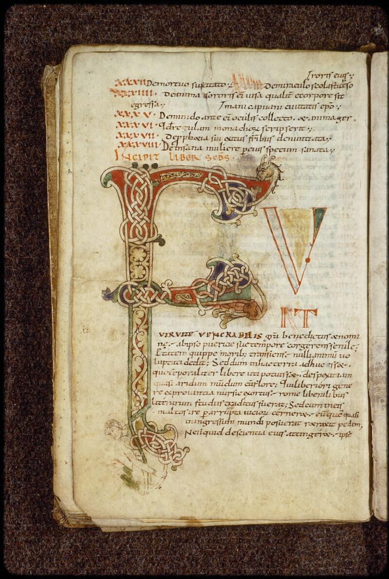Lyon, Bibl. mun., ms. 1509, f. 019v - vue 1