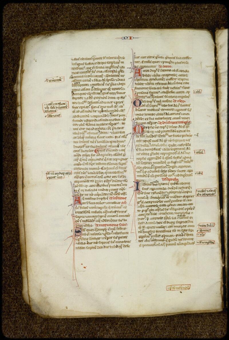 Lyon, Bibl. mun., ms. 2397, f. 026v