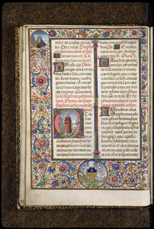 Lyon, Bibl. mun., ms. 5123, f. 021v - vue 1