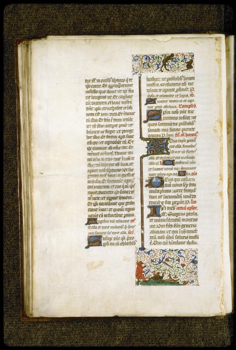 Lyon, Bibl. mun., ms. 5124, f. 112v - vue 1