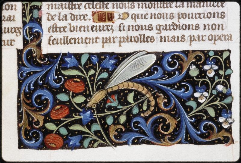 Lyon, Bibl. mun., ms. 5125, f. 134v - vue 2