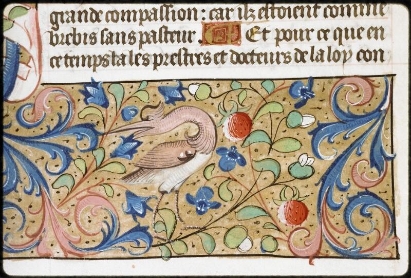 Lyon, Bibl. mun., ms. 5125, f. 184