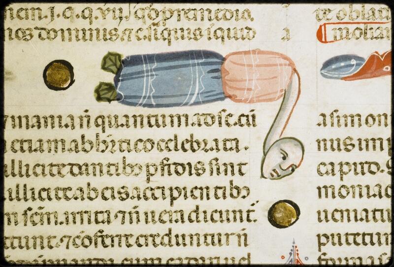 Lyon, Bibl. mun., ms. 5128, f. 083