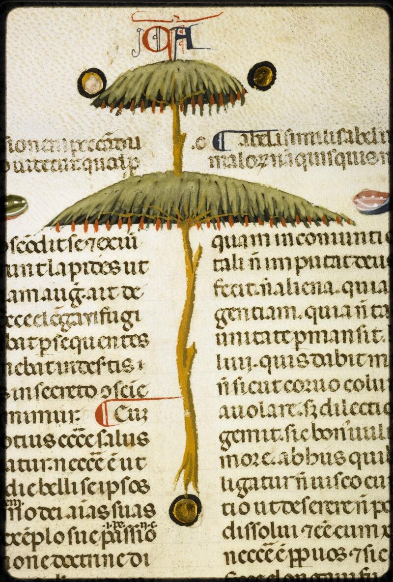Lyon, Bibl. mun., ms. 5128, f. 125v