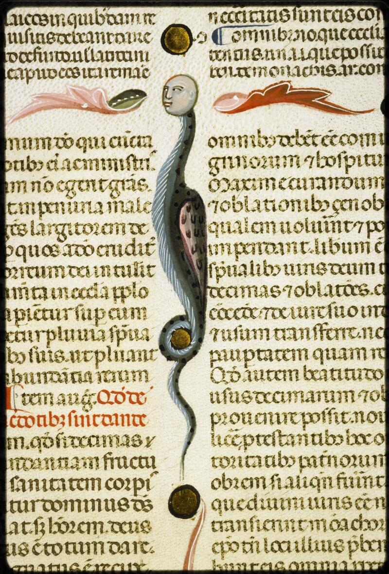 Lyon, Bibl. mun., ms. 5128, f. 169