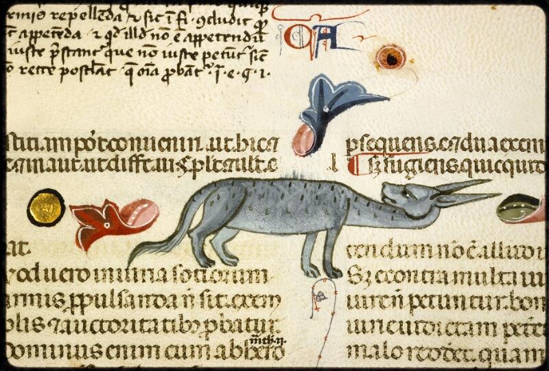 Lyon, Bibl. mun., ms. 5128, f. 194v