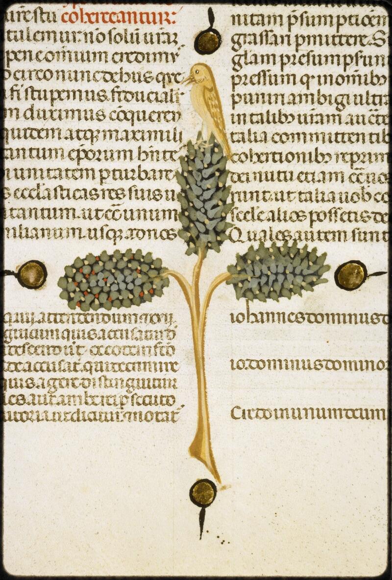 Lyon, Bibl. mun., ms. 5128, f. 207