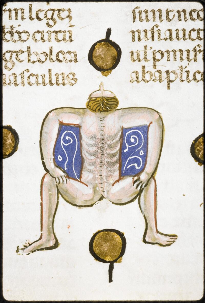 Lyon, Bibl. mun., ms. 5128, f. 224 - vue 2