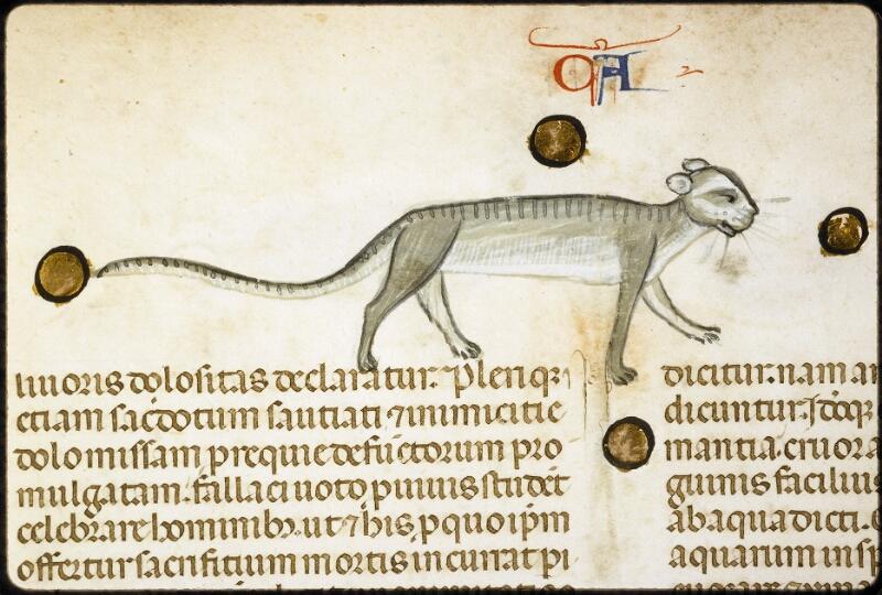 Lyon, Bibl. mun., ms. 5128, f. 229v