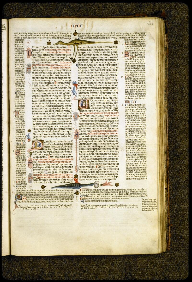 Lyon, Bibl. mun., ms. 5128, f. 243