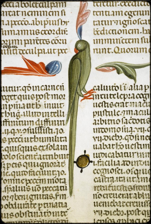 Lyon, Bibl. mun., ms. 5128, f. 264