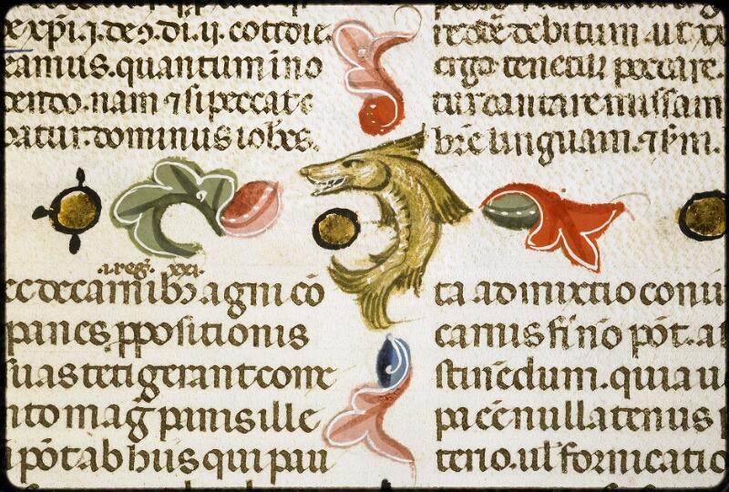 Lyon, Bibl. mun., ms. 5128, f. 284v