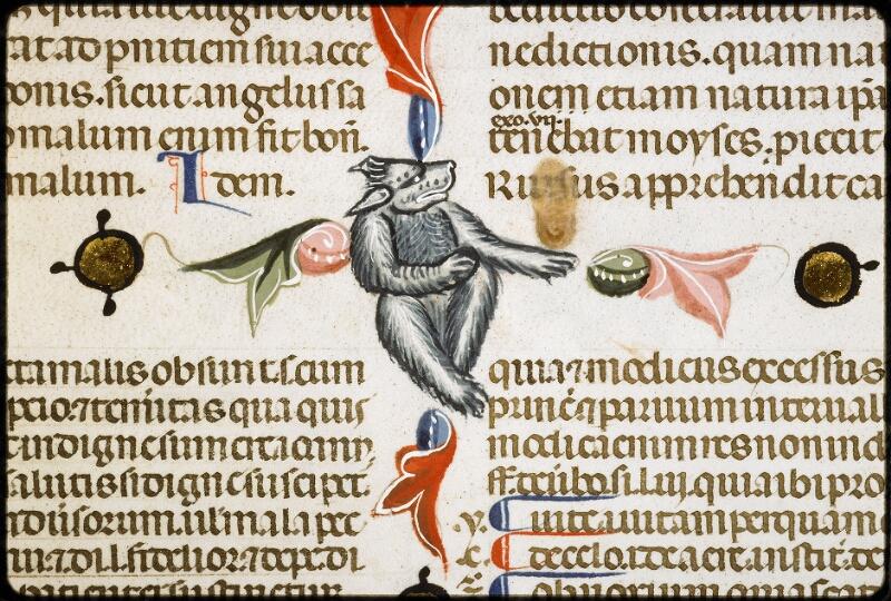 Lyon, Bibl. mun., ms. 5128, f. 303