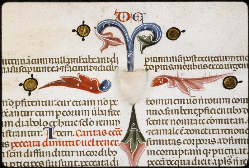 Lyon, Bibl. mun., ms. 5128, f. 316v