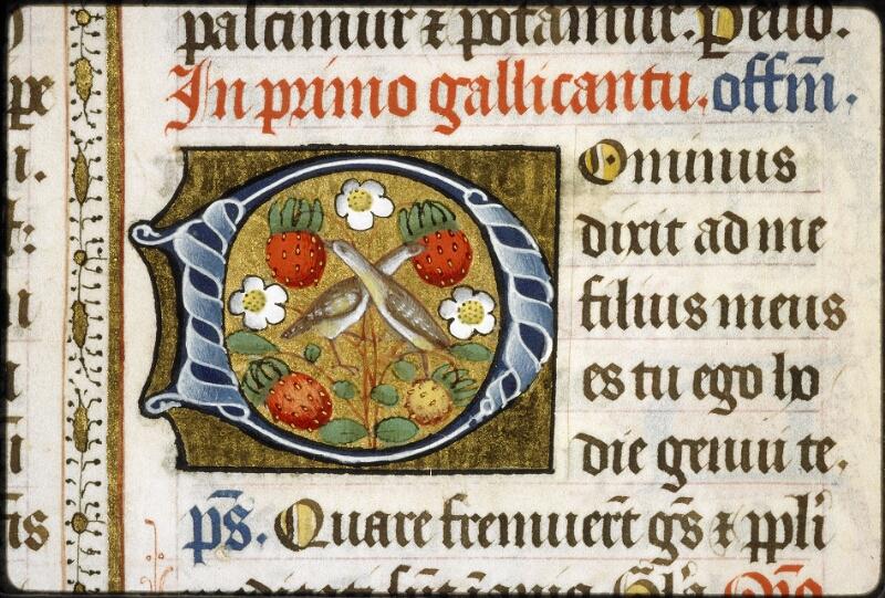 Lyon, Bibl. mun., ms. 5129, f. 017v - vue 3