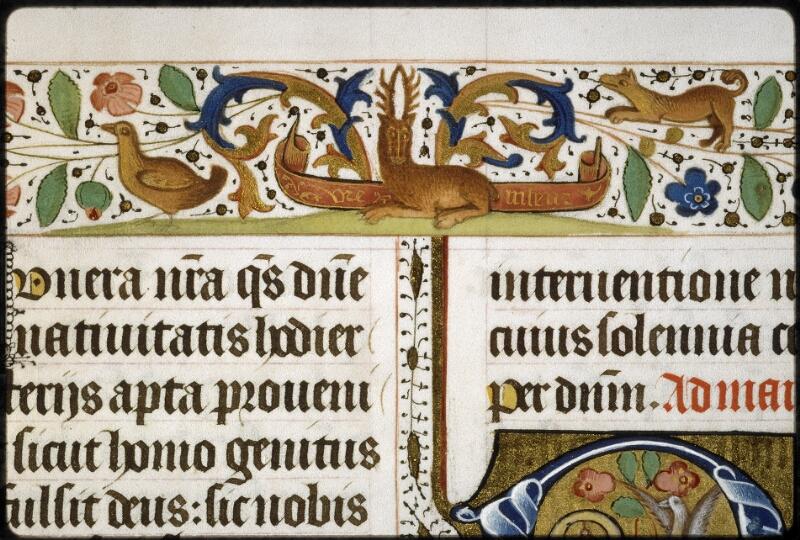 Lyon, Bibl. mun., ms. 5129, f. 019v - vue 3