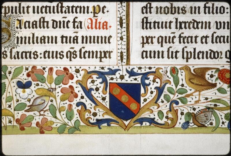 Lyon, Bibl. mun., ms. 5129, f. 019v - vue 4