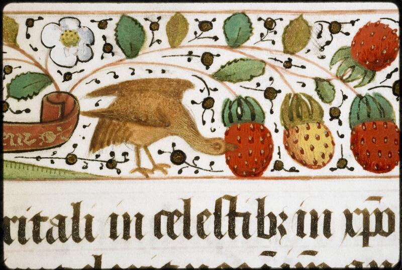Lyon, Bibl. mun., ms. 5129, f. 023 - vue 3