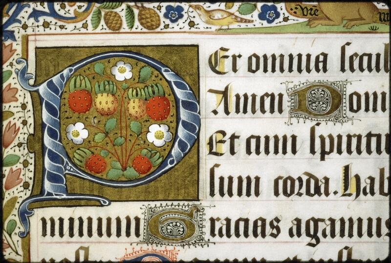 Lyon, Bibl. mun., ms. 5129, f. 143 - vue 2