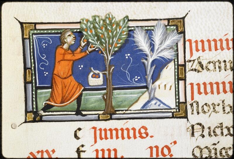 Lyon, Bibl. mun., ms. 5135, f. 005v