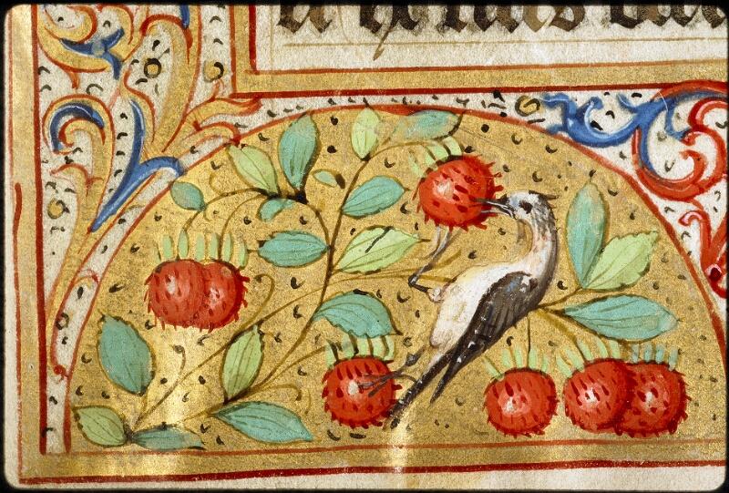 Lyon, Bibl. mun., ms. 5136, f. 009 - vue 4