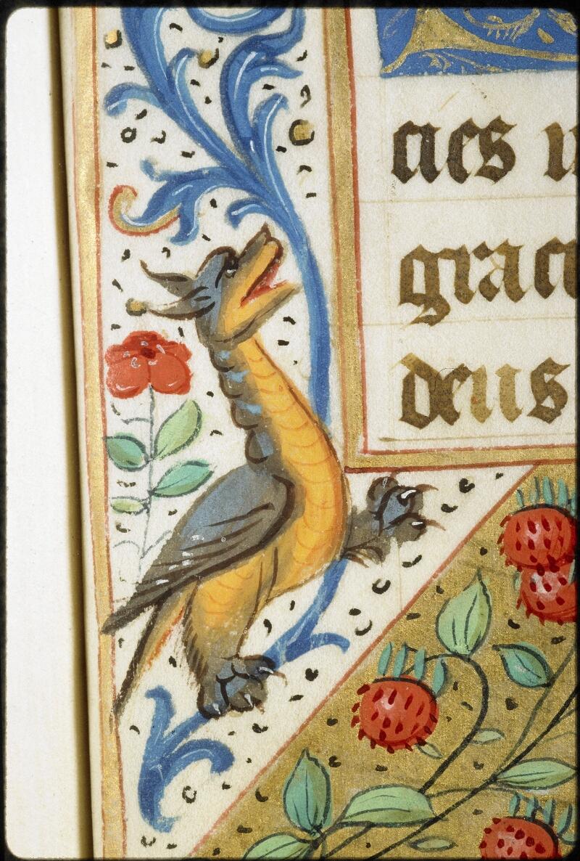 Lyon, Bibl. mun., ms. 5136, f. 100 - vue 4