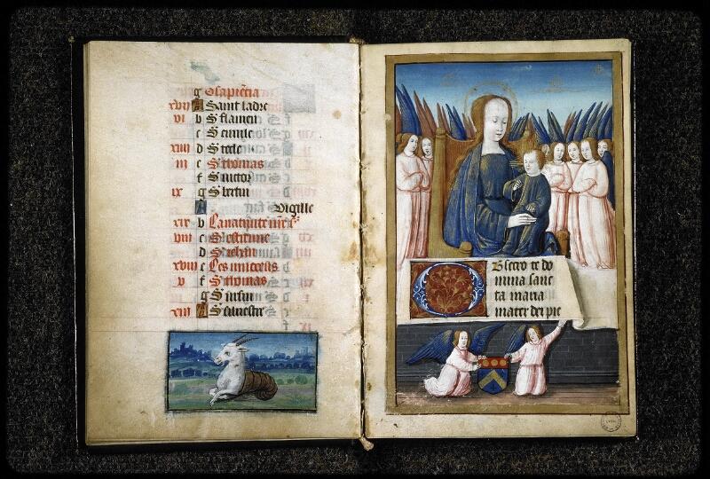 Lyon, Bibl. mun., ms. 5141, f. 012v-013