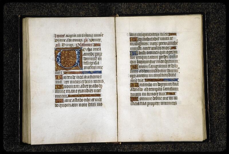 Lyon, Bibl. mun., ms. 5141, f. 110v-111