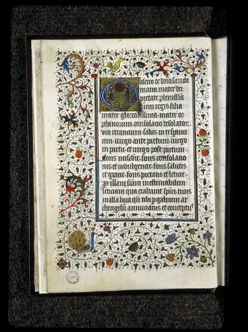 Lyon, Bibl. mun., ms. 5142, f. 005v - vue 1