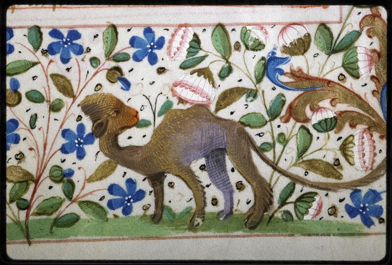 Lyon, Bibl. mun., ms. 5144, f. 101 - vue 5