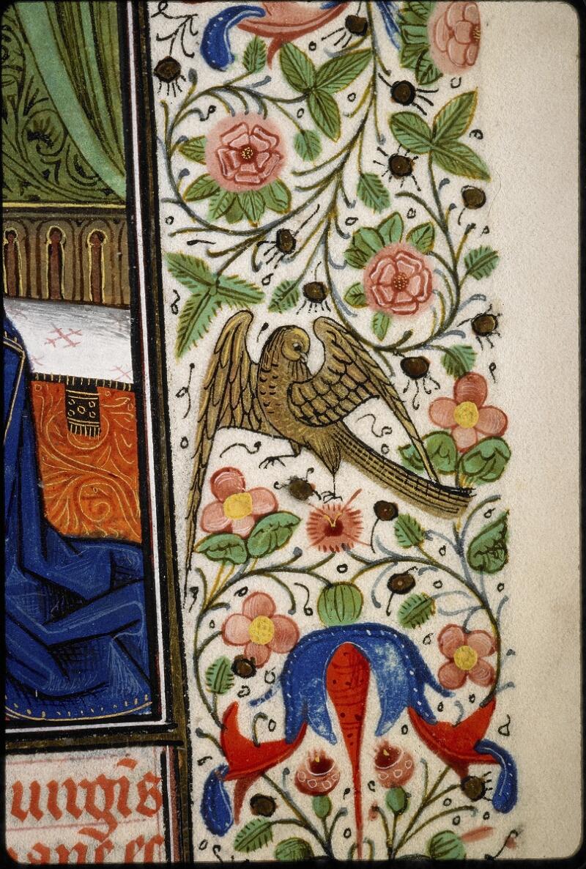 Lyon, Bibl. mun., ms. 5147, f. 031 - vue 3