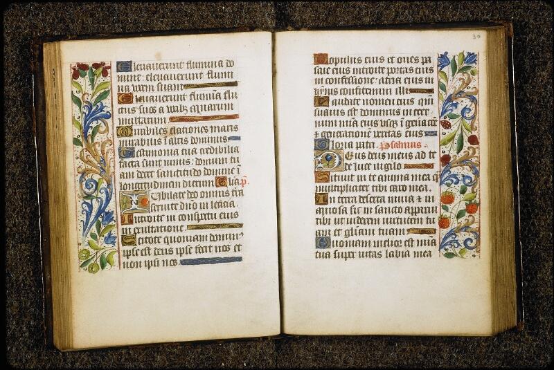 Lyon, Bibl. mun., ms. 5149, f. 029v-030