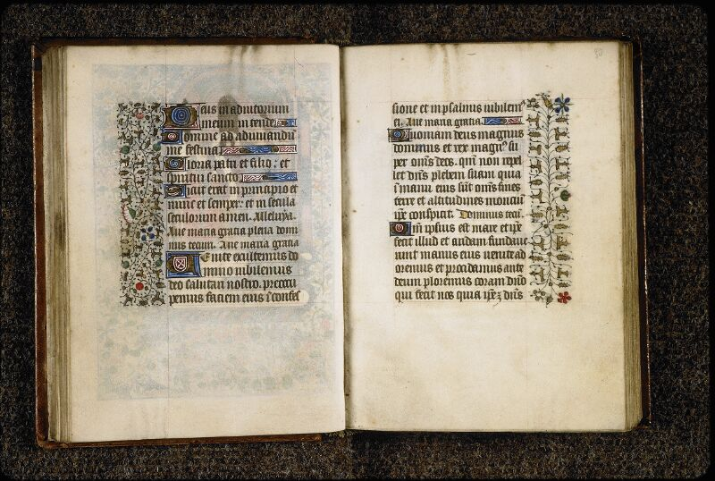Lyon, Bibl. mun., ms. 5150, f. 029v-030