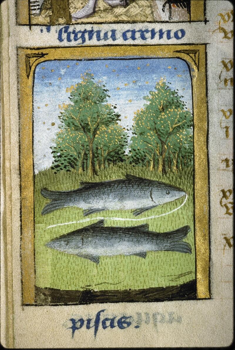 Lyon, Bibl. mun., ms. 5154, f. 002v - vue 3