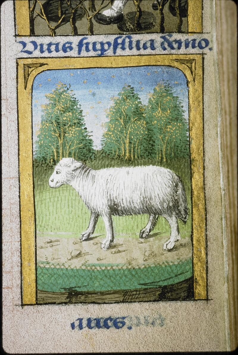 Lyon, Bibl. mun., ms. 5154, f. 003 - vue 3