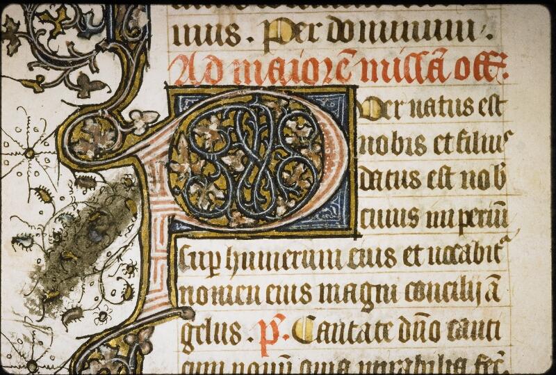 Lyon, Bibl. mun., ms. 5386, f. 016v - vue 2
