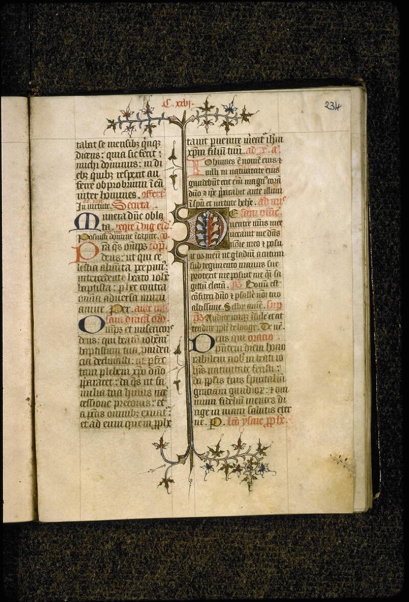 Lyon, Bibl. mun., ms. 5386, f. 234