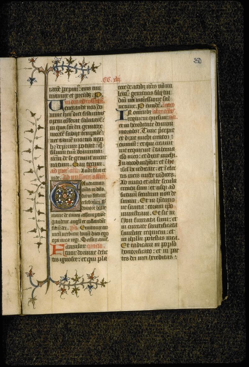 Lyon, Bibl. mun., ms. 5386, f. 250