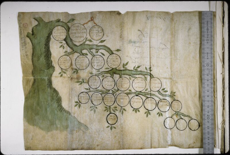 Lyon, Bibl. mun., ms. 5465, t. II, n° 21 - vue 1