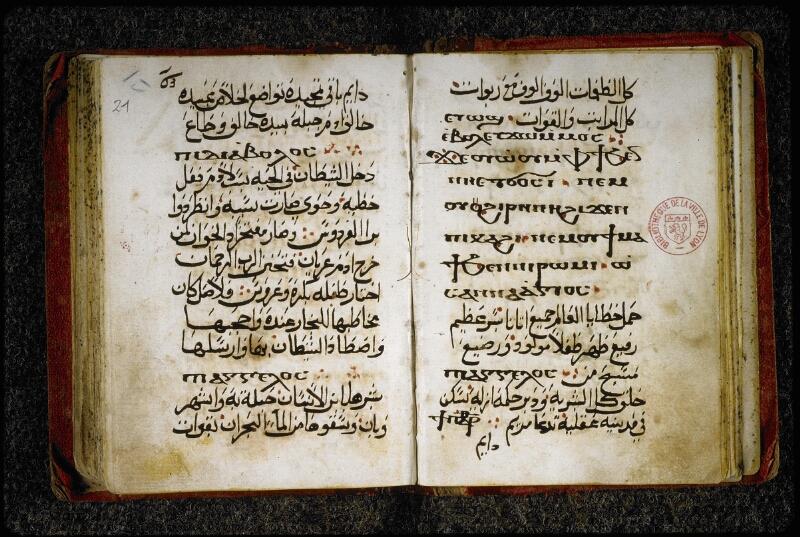 Lyon, Bibl. mun., ms. 5839, f. 020v-021