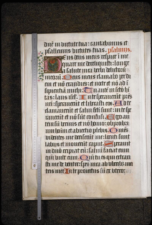 Lyon, Bibl. mun., ms. 5954, f. 018v - vue 1