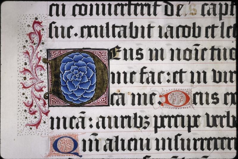 Lyon, Bibl. mun., ms. 5954, f. 050 - vue 2