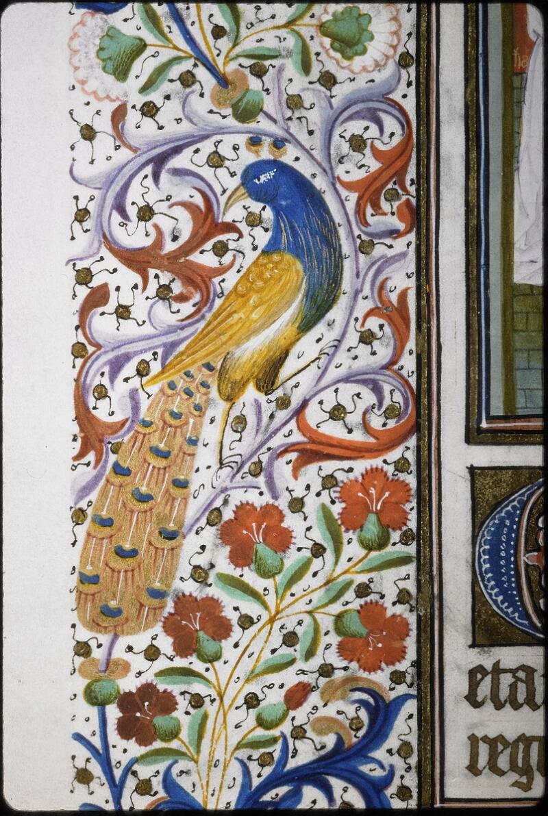 Lyon, Bibl. mun., ms. 5995, f. 030v - vue 2