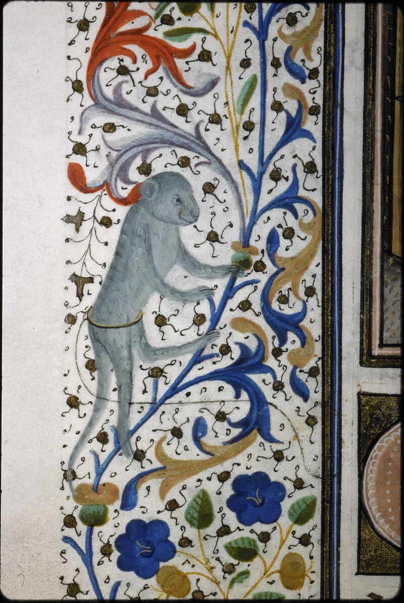 Lyon, Bibl. mun., ms. 5995, f. 098v - vue 2