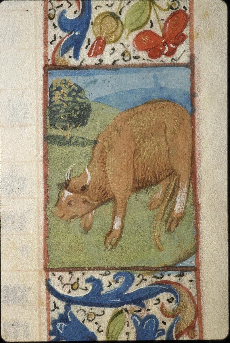 Lyon, Bibl. mun., ms. 5996, f. 004 - vue 1